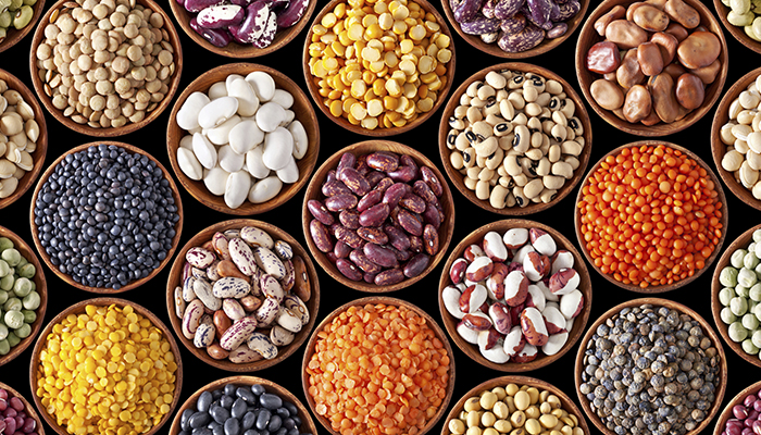 She Sweats: Protein Substitutes