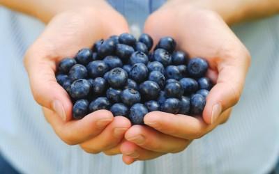 She Sweats: Blueberries